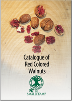 red colores walnuts