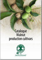 walnus productions cultivars